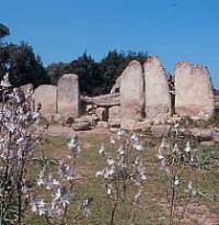 Tomba dei Giganti di Su Monte de S'Ape