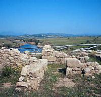 Fattoria Romana